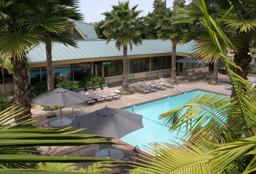 Outside Pool in BEST WESTERN Seven Seas