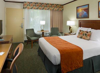 Standard Single Room in BEST WESTERN Seven Seas, San Diego